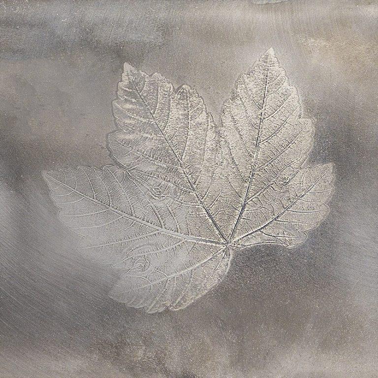 Bergahornblatt mit Sprengfolie in Metall verewigt